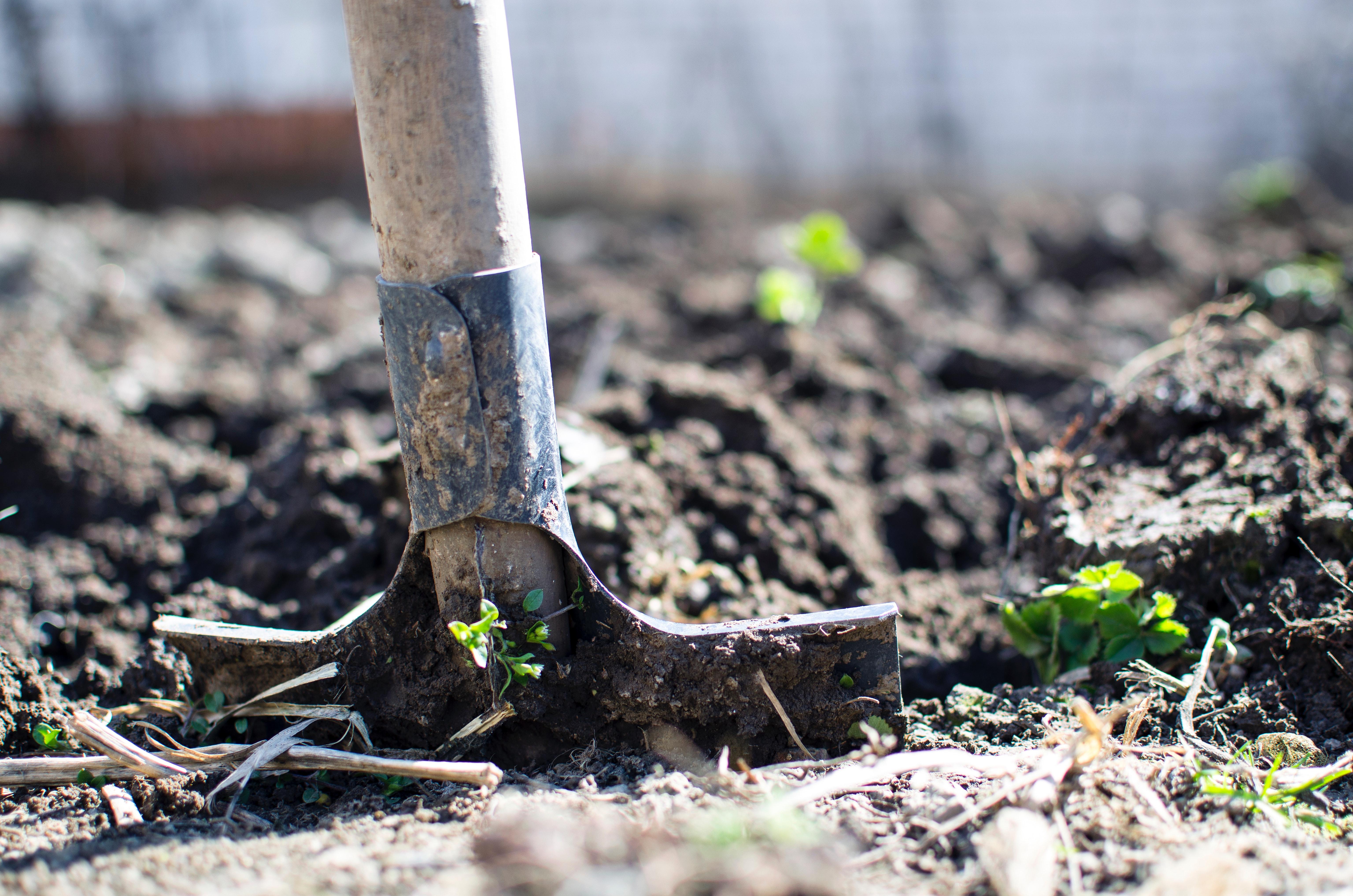 Kom godt i mål med dine hus- og haveprojekter med faldunderlag og brolæggersand fra GrusDirekte.dk
